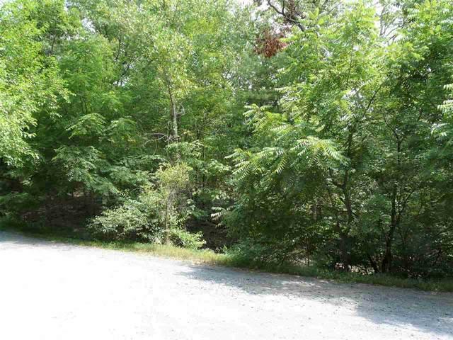 0 Secession Ln, New Market, VA 22844 (MLS #606369) :: Jamie White Real Estate