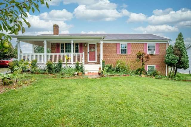 108 Harper St, Weyers Cave, VA 24486 (MLS #606817) :: KK Homes