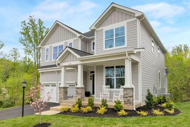 262 Delphi Ln, CHARLOTTESVILLE, VA 22911 (MLS #606834) :: KK Homes