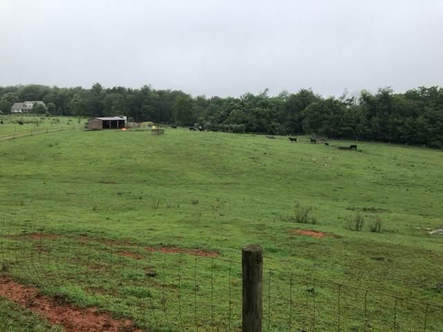 tbd Fallen Oak Dr, GREENVILLE, VA 24440 (MLS #607134) :: KK Homes