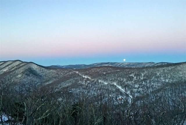 360 Fortunes Ridge Dr, Wintergreen Resort, VA 22967 (MLS #607239) :: Jamie White Real Estate