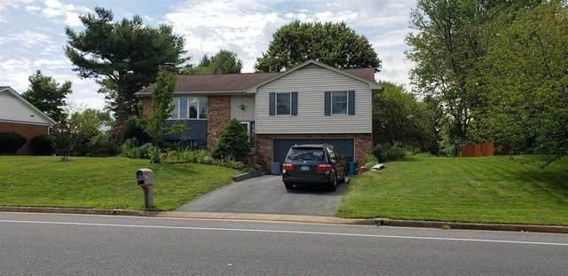 860 Blue Ridge Dr, HARRISONBURG, VA 22802 (MLS #607323) :: Real Estate III