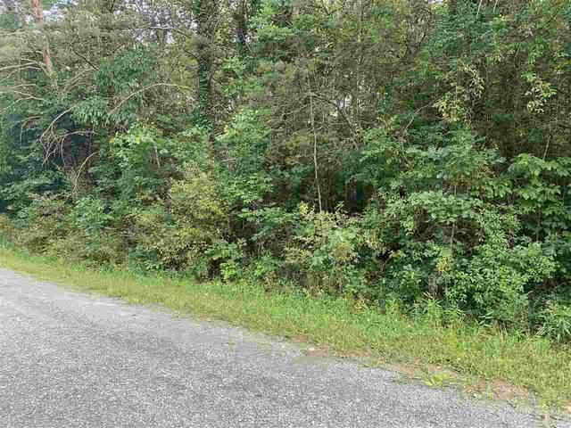 0 Park View Dr D8, Luray, VA 22835 (MLS #608061) :: KK Homes