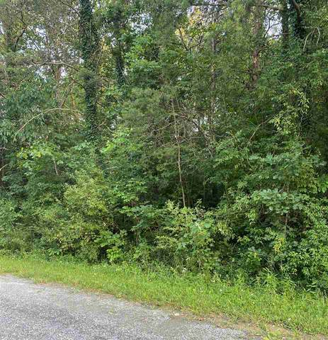 0 Park View Dr D7, Luray, VA 22835 (MLS #608063) :: Real Estate III