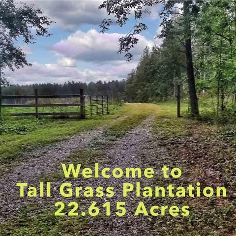 212 Houchens Rd #98, MINERAL, VA 23117 (MLS #608356) :: Jamie White Real Estate