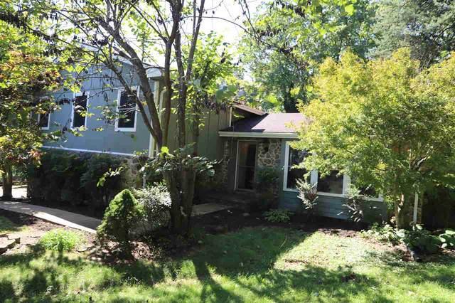 2466 Bingham Mountain Rd, DYKE, VA 22935 (MLS #608735) :: Jamie White Real Estate