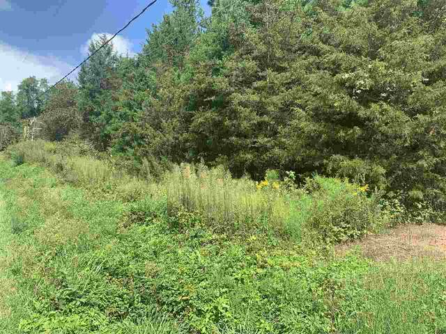 1205 Carpenters Mill Rd, RUCKERSVILLE, VA 22968 (MLS #608745) :: Jamie White Real Estate