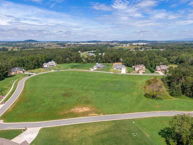 Lot 25 Jacobs Ln, Stuarts Draft, VA 24477 (MLS #608845) :: KK Homes