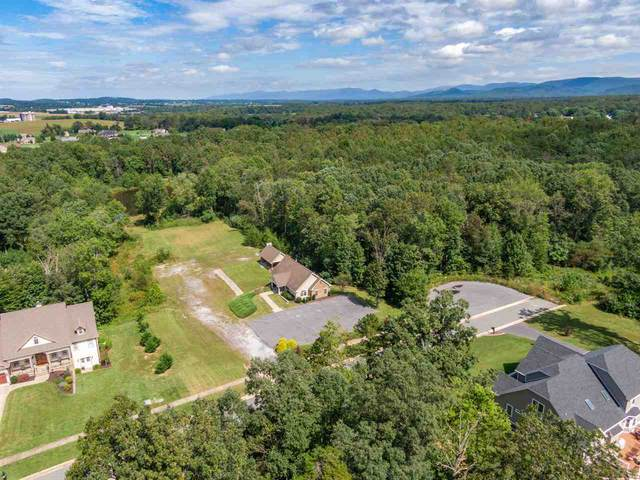 Lot 19 Jaspers Ln, Stuarts Draft, VA 24477 (MLS #608848) :: KK Homes