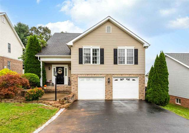 502 Ritchie Blvd, STAUNTON, VA 24401 (MLS #608981) :: Jamie White Real Estate