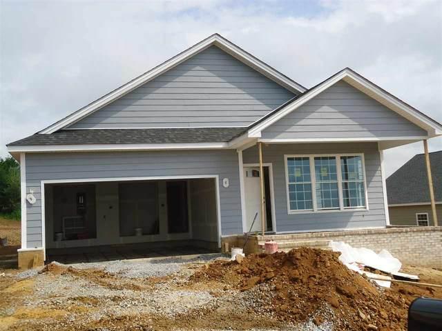 109 Chamberlain Dr, STAUNTON, VA 24401 (MLS #609001) :: KK Homes
