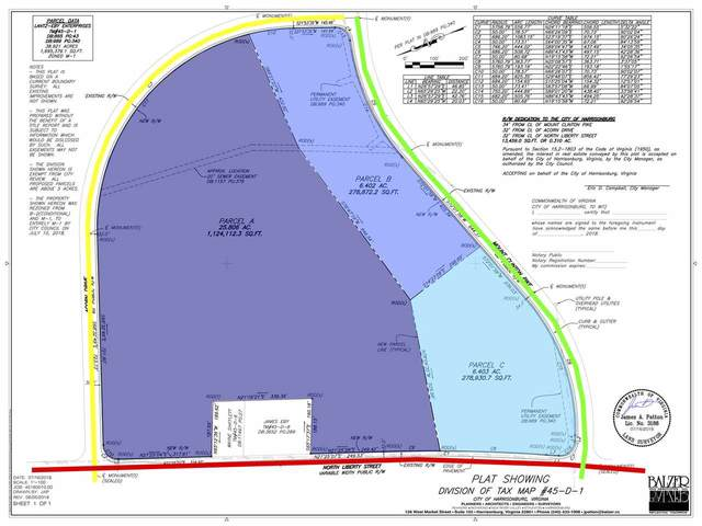 25.8 ACRES Mt Clinton Pike Parcel A, HARRISONBURG, VA 22801 (MLS #609133) :: Real Estate III