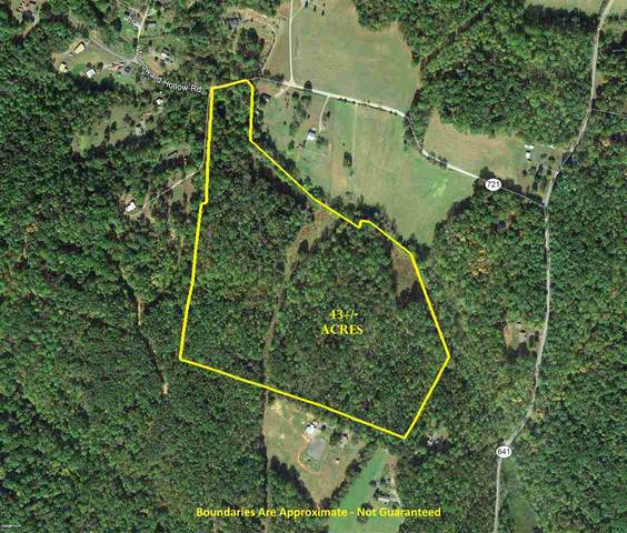 Woodward Hollow Rd, Madison, VA 22727 (MLS #609241) :: KK Homes