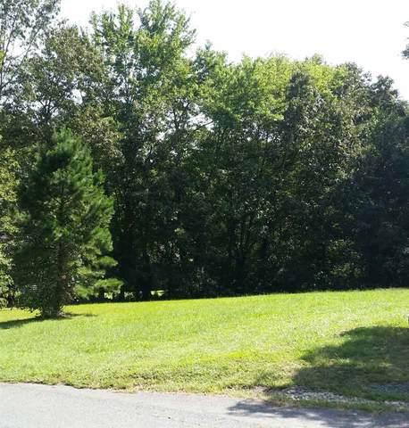 275 Pine Rd, SCOTTSVILLE, VA 24590 (MLS #609617) :: KK Homes