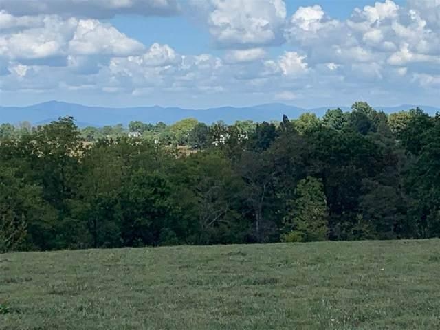 TBD Blue Ridge Tpk, SOMERSET, VA 22972 (MLS #609719) :: KK Homes