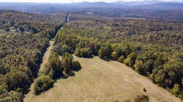 7935 B Old Green Mountain Rd, Esmont, VA 22937 (MLS #609763) :: KK Homes