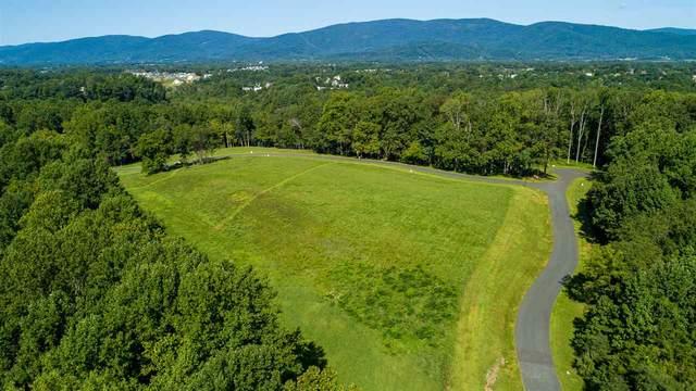 3 Eagle View, CHARLOTTESVILLE, VA 22903 (MLS #609808) :: Jamie White Real Estate