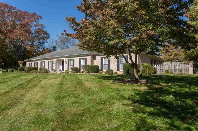 3399 Little Calf Pasture Hwy, Craigsville, VA 24430 (MLS #609816) :: Jamie White Real Estate