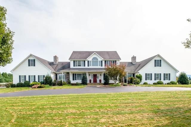 119 Abner Ln, WAYNESBORO, VA 22980 (MLS #610072) :: KK Homes