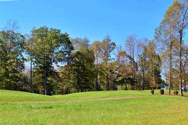Lot 24 London Ln #24, AMHERST, VA 24521 (MLS #610154) :: Jamie White Real Estate