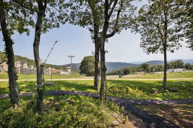 243 Timbers Condos, Wintergreen Resort, VA 22967 (MLS #610159) :: Jamie White Real Estate
