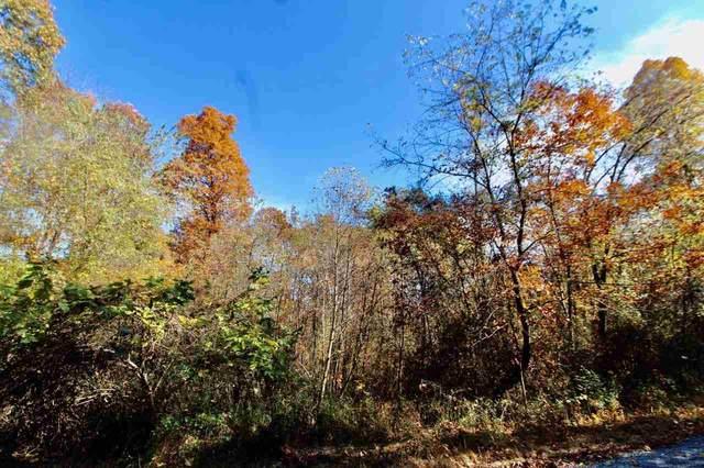 TBD Big Hill Rd, Mount Solon, VA 22843 (MLS #610179) :: Real Estate III