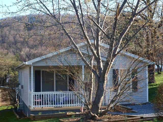 345 Mary Gray Ln, STAUNTON, VA 24401 (MLS #610200) :: Real Estate III