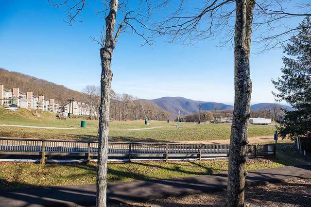 215 Timbers Condos #215, Wintergreen Resort, VA 22967 (MLS #610508) :: KK Homes