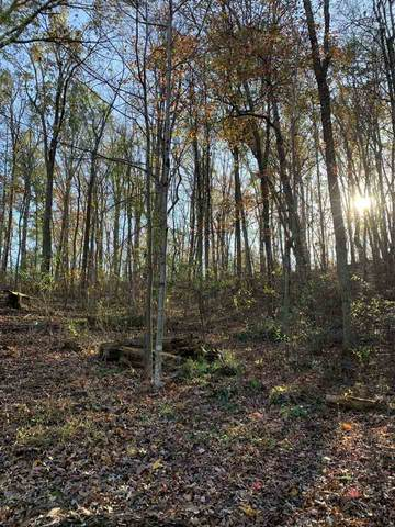 TBD Horseshoe Hollow Ln, GREENVILLE, VA 24440 (MLS #610671) :: Jamie White Real Estate