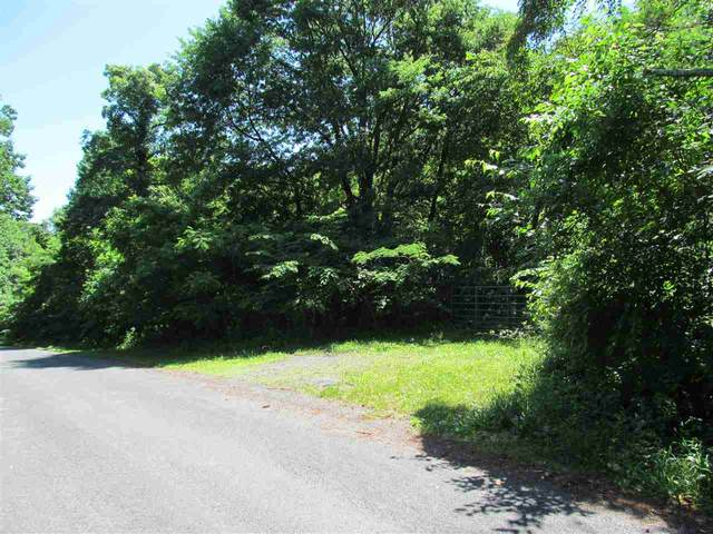 0 Old Rapidan Rd, ORANGE, VA 22960 (MLS #610789) :: KK Homes