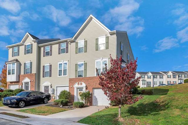 2010 Elm Tree Ct, CHARLOTTESVILLE, VA 22911 (MLS #610805) :: Jamie White Real Estate