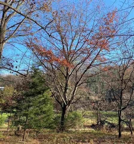 18160 Buzzard Hollow Rd 14 D, GORDONSVILLE, VA 22942 (MLS #610838) :: KK Homes