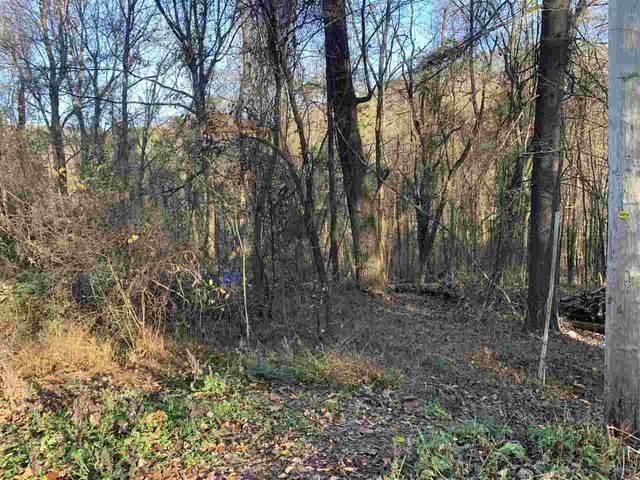 Whispering Ln 91B-4-B17, Stanley, VA 22851 (MLS #610850) :: Jamie White Real Estate