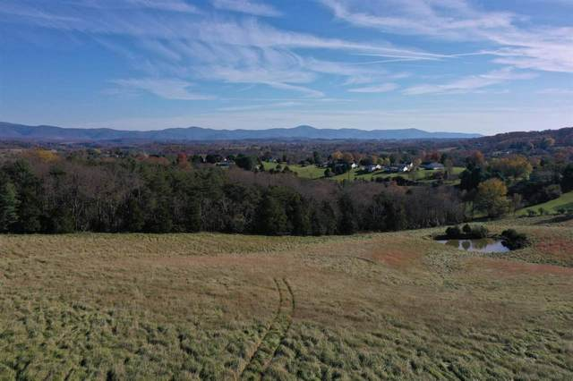 Mooreland Blvd, LEXINGTON, VA 24450 (MLS #610938) :: Real Estate III