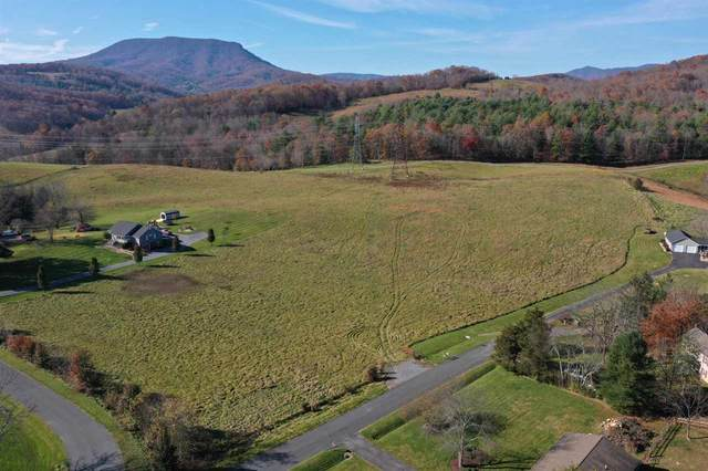 TBD SW Southwest View Dr, LEXINGTON, VA 24450 (MLS #610940) :: Real Estate III