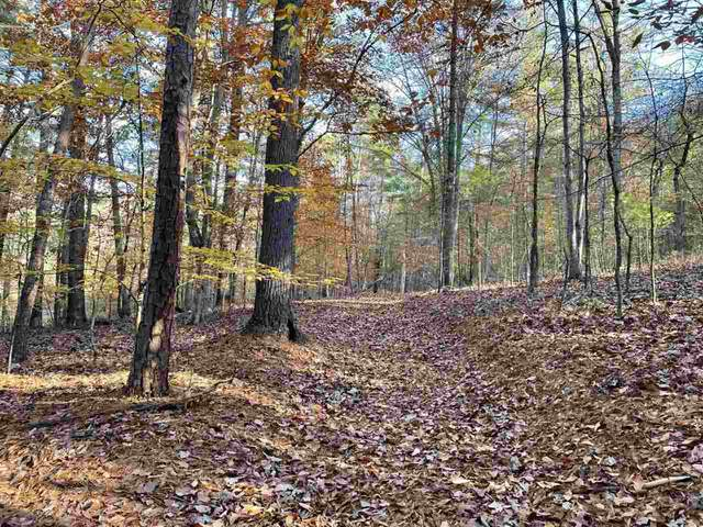 TBD Mooreland Blvd, LEXINGTON, VA 24450 (MLS #610941) :: Real Estate III
