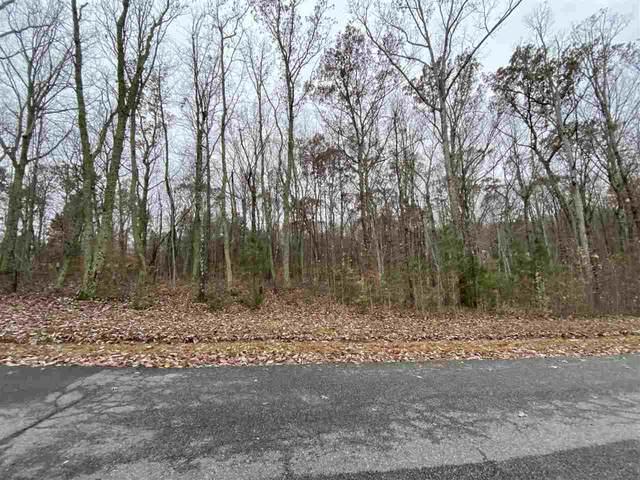 87 Richardson Dr, LOUISA, VA 23093 (MLS #611149) :: KK Homes