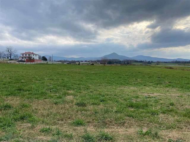 0 Vista View Rd #2, Stanley, VA 22851 (MLS #611168) :: Jamie White Real Estate