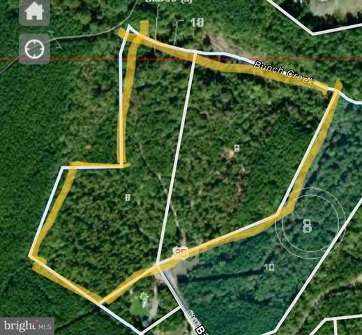 Lot 8 & 9 Bunch Ln, GORDONSVILLE, VA 22942 (MLS #611227) :: Jamie White Real Estate