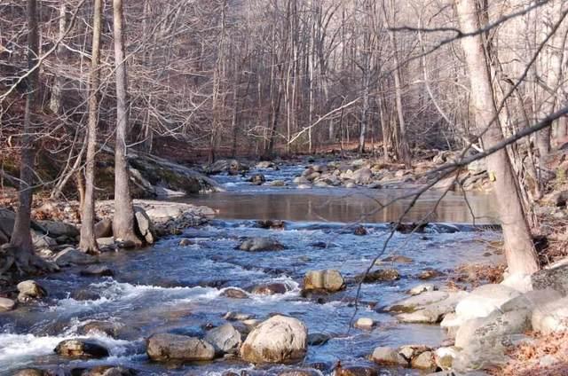 9664 Crabtree Falls Hwy, Tyro, VA 22976 (MLS #611338) :: Real Estate III
