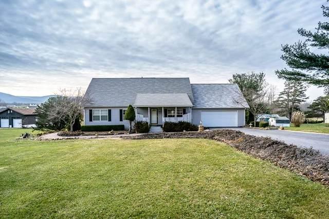 917 Patton Farm Rd, Stuarts Draft, VA 24477 (MLS #611375) :: KK Homes