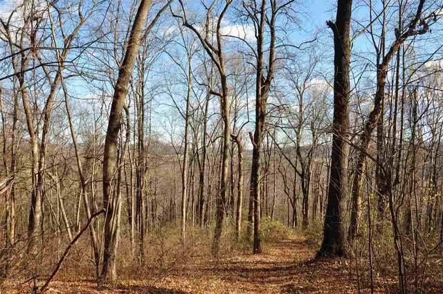 0 Etlan Rd, Etlan, VA 22719 (MLS #611390) :: Jamie White Real Estate