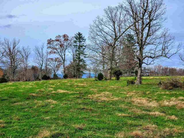 Lot 8 Fredericksburg Rd #8, RUCKERSVILLE, VA 22968 (MLS #611412) :: Real Estate III