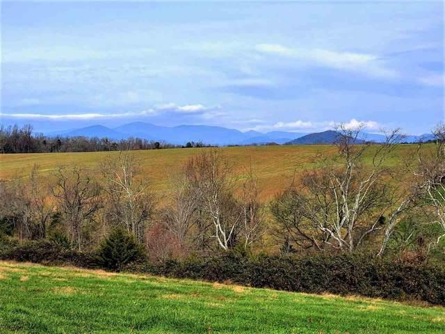 Lot 4 Fredericksburg Rd #4, RUCKERSVILLE, VA 22968 (MLS #611413) :: Real Estate III