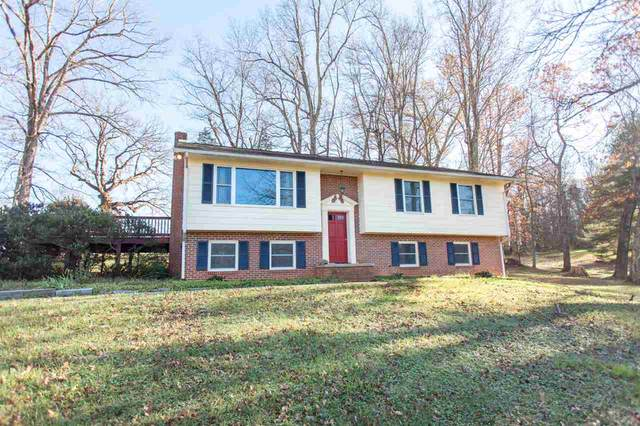 125 Nether Springs Ct, AFTON, VA 22920 (MLS #611490) :: Real Estate III