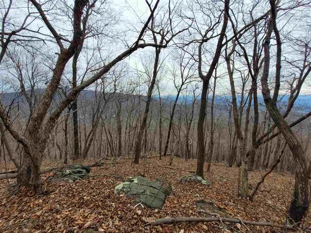 0 Flattop Mountain Rd, FREE UNION, VA 22940 (MLS #611497) :: KK Homes