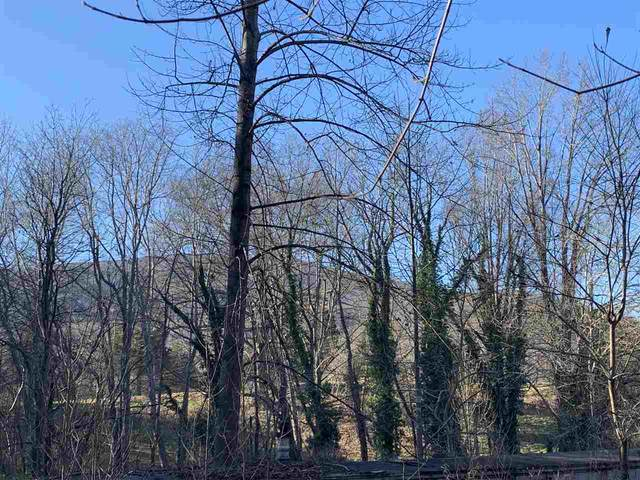 TBD Crawfords View Rd, AFTON, VA 22920 (MLS #611506) :: Real Estate III