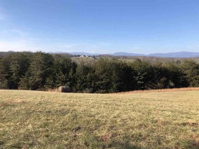 Frays Mill Rd 2014B1, RUCKERSVILLE, VA 22968 (MLS #611741) :: Jamie White Real Estate