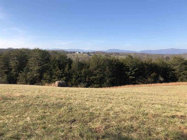 1527 Frays Mill Rd, RUCKERSVILLE, VA 22968 (MLS #611742) :: Jamie White Real Estate