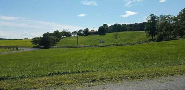 TBD Leaport Rd, Mount Sidney, VA 24467 (MLS #612003) :: KK Homes